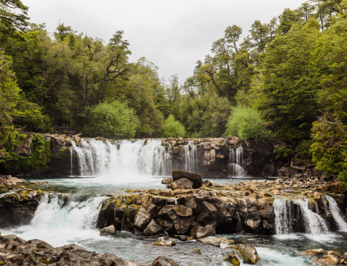 Conversatorio busca poner en valor el patrimonio natural de la Región de Los Ríos